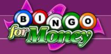BingoForMoney USA Mobile Slot Casino & Bingo Site